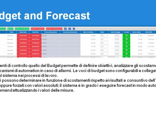 Budget and Forecast